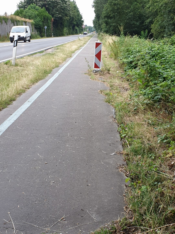 Radweg auf der L 390