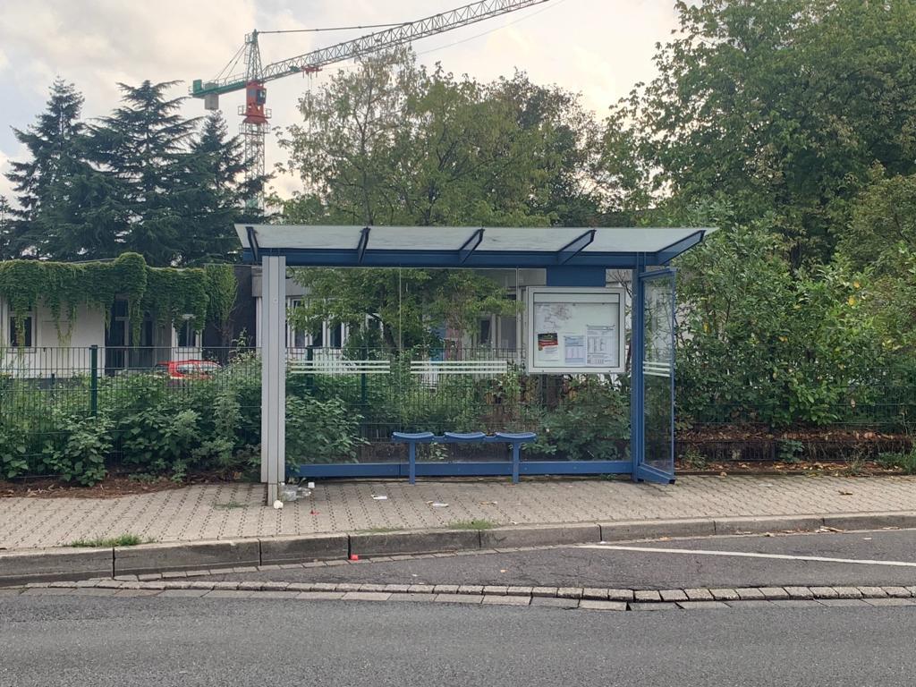Gründächer für Bushaltestellen
